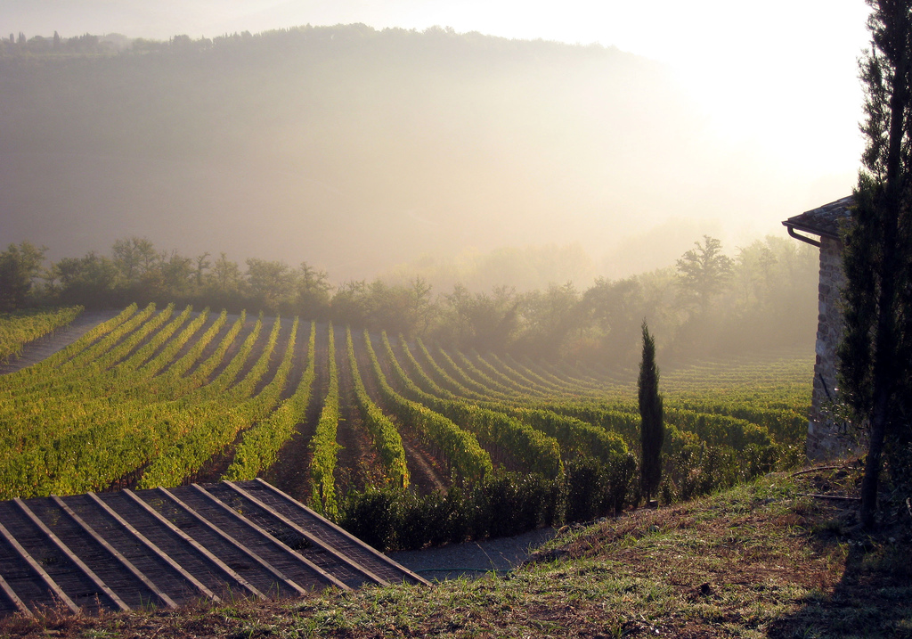 Tuscany : view from Vignale